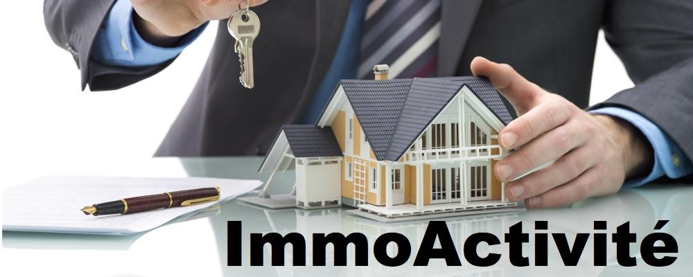 Immobilier activité